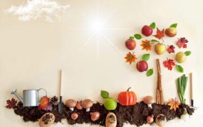 Il miele d'autunno, tre golose ricette